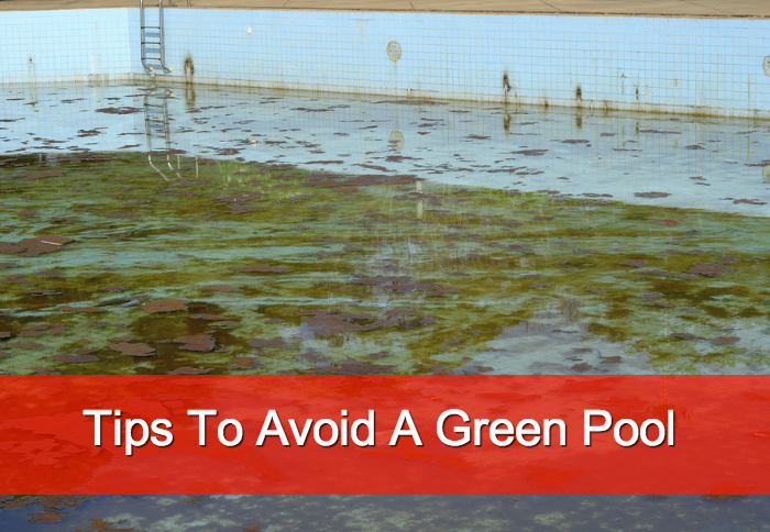 Keep Your Pool From Going Green