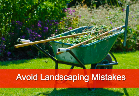 Common Landscaping Mistakes and How To Avoid Them